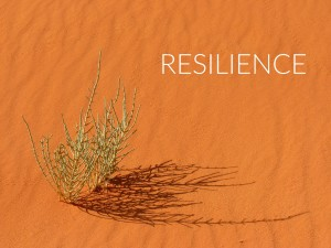 Resilience describes the ability of people to bounce back from adversity. Anyone who is not resilient can become resilient. It is a learned behavior.